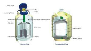 interior de contenedor de nitrogeno YDS para crioterapia
